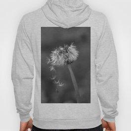 Black and white dandelion flying petals Hoody
