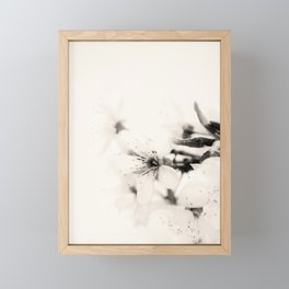 Monochrome Blossoms Close-up Framed Mini Art Print