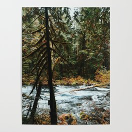Along The Mckenzie River Poster