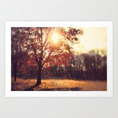 Autumn Sun  Art Print