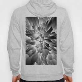 Flowers Exploding in Black and White Hoody