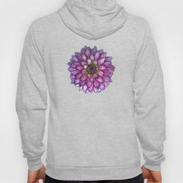 Dahlia Purple & White with water droplets Hoody