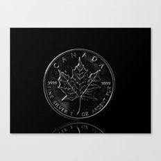 Silver Dollar Canvas Print