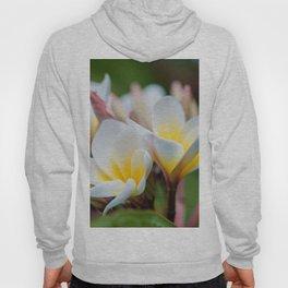 White Spring Flower Hoody