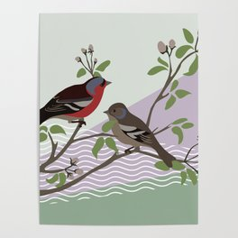 loving chaffinches Poster