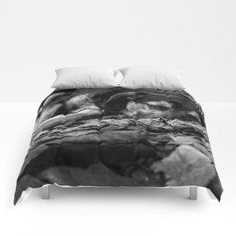 Homeless Comforters