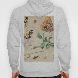 "Jan van Kessel de Oude ""Study of insects and flowers"" Hoody"