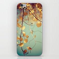 golden aspen iPhone & iPod Skin