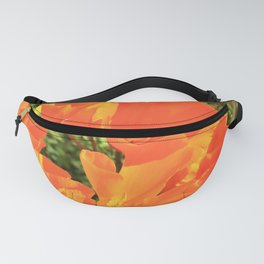 Orange Gold California Poppies by Reay of Light Fanny Pack