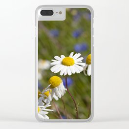 camomiles Clear iPhone Case