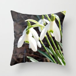 Snowdrops in Late Winter Throw Pillow