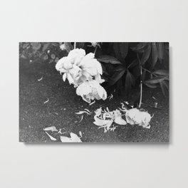 Let the Petals Fall Metal Print