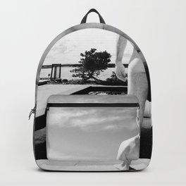 Bare Butt Black Pool Backpack
