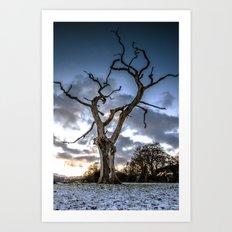 Dead of Winters Light Art Print