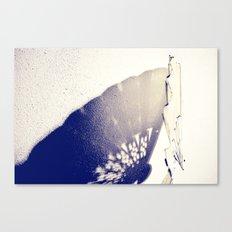 Shadows II Canvas Print
