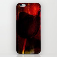 Venus Rose Red iPhone & iPod Skin