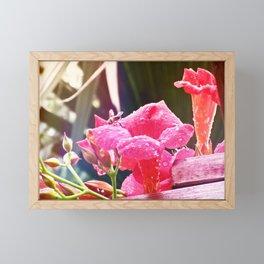 Bee Marvelous Framed Mini Art Print