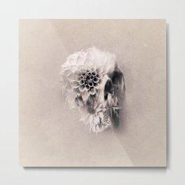 Decay Skull Light Metal Print