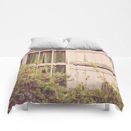 Antique Window Comforters