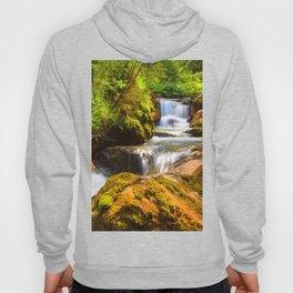 Swiss rapids. Hoody