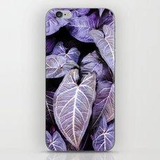 Jungle leaf - amethyst iPhone & iPod Skin