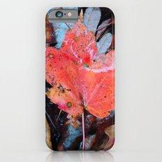 autumnal reverie 646 iPhone 6s Slim Case