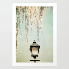 Old Town Blossoms Art Print