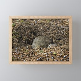 Refresher Course on the Finer Points of Hiding Needed Framed Mini Art Print