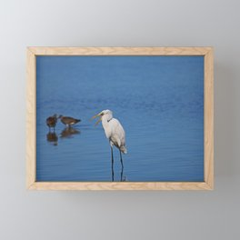 What's Goin' On Over There Framed Mini Art Print