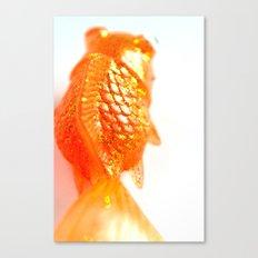 Fish fins Canvas Print