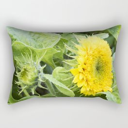 Teddy Bear Sunflower from Bud to Bloom Rectangular Pillow