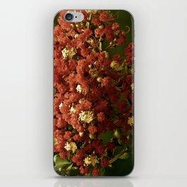 Christmas Crepe Tree iPhone Skin