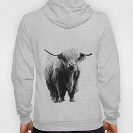 Newspaper Print Style Highland Cow. Scotland, Bull, Horns. Hoody