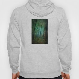 Calming blue winds Hoody