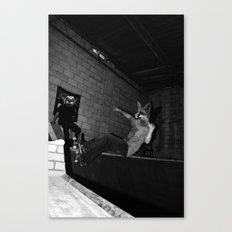 Skating Frontside Fox Canvas Print