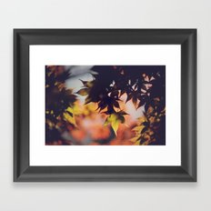 Fall dreams Framed Art Print