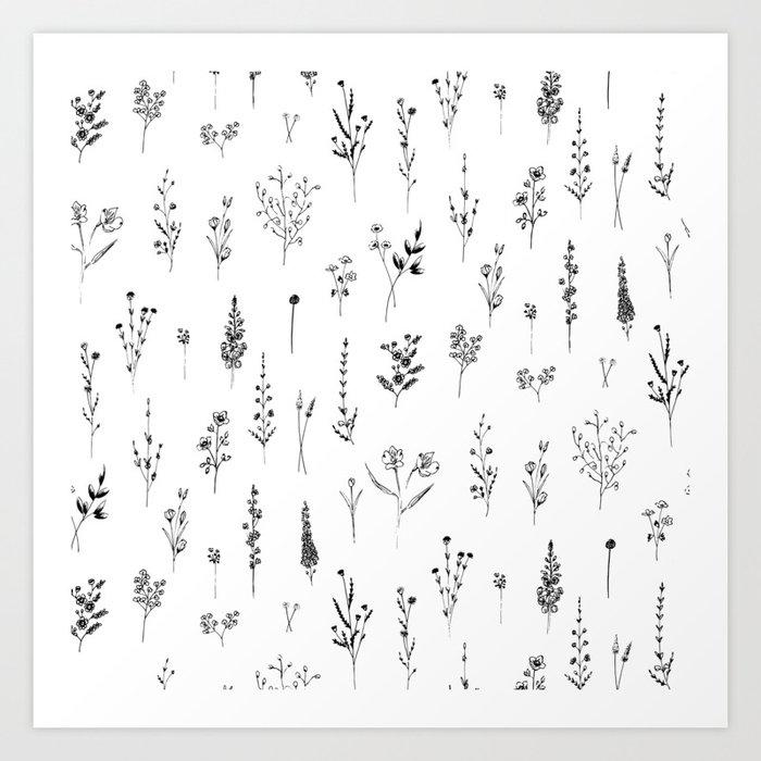 Wildflowers Kunstdrucke