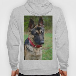 I'm a Good Boy, I am. Hoody