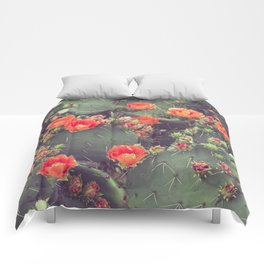 Flamenco Comforters