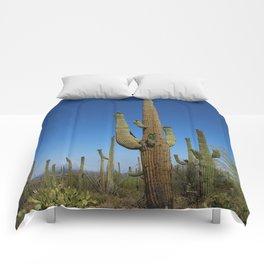 In The Sonoran Desert Comforters