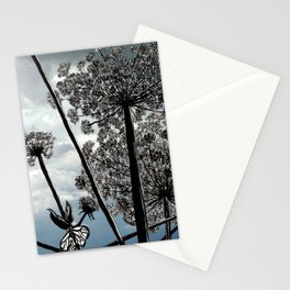 Queen Anne's Lace from a bug's view Stationery Cards