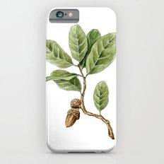 Live Oak Slim Case iPhone 6s