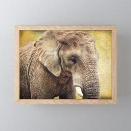 Elephant 4 Framed Mini Art Print