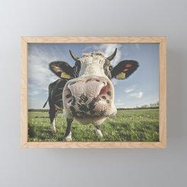 Inquisitive Cow Framed Mini Art Print