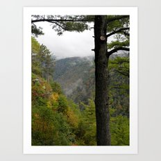Pine Creek Gorge 2 Art Print