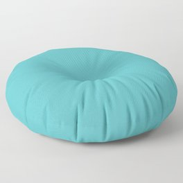 Tiffany Blue, yep that's the colors name! Floor Pillow