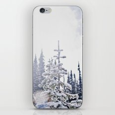 Fresh Mountain Snow iPhone & iPod Skin