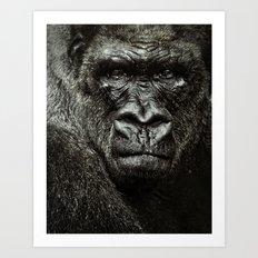 mad gorilla Art Print