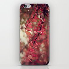 Crimson Blush iPhone & iPod Skin