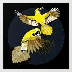 Blue Jays. Art Print